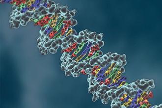 Can thiệp liệu pháp gene có thể chữa điếc bẩm sinh